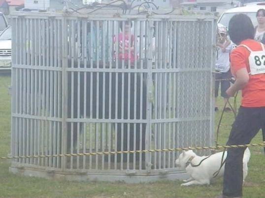 2012.7.22 獣猟競技2