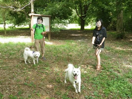 2012.8.12 みんなで散歩3