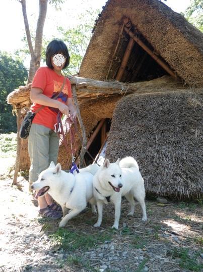 2012.8.26 竪穴式住居
