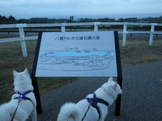 2012.9.4 八雲PA1