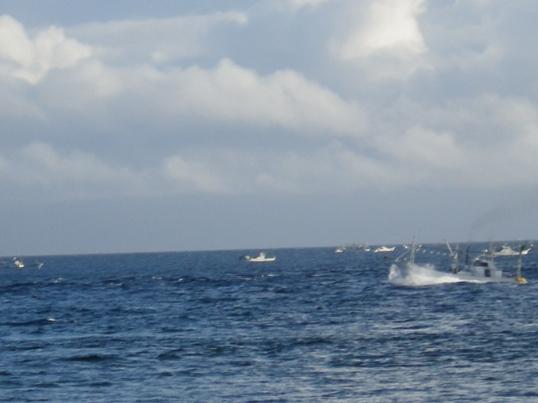 2012.9.4 コンブ漁の船