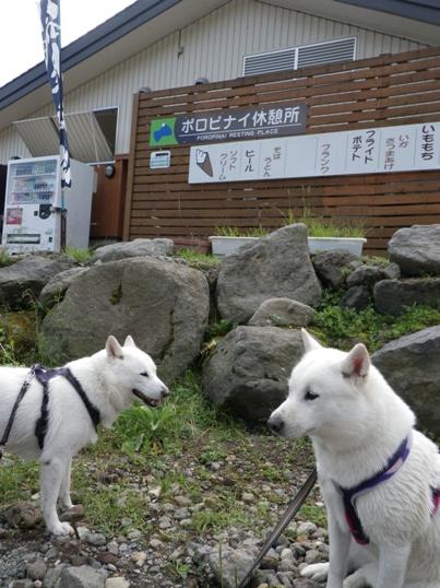 2012.9.5 支笏湖・ポロピナイ休憩所