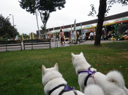 2012.9.6 道の駅 マオイの丘公園4