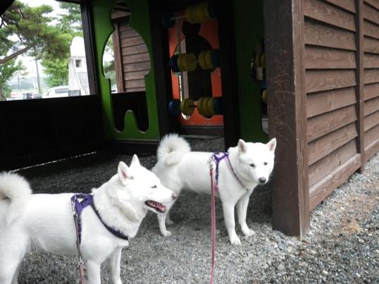 2012.9.6 道の駅 マオイの丘公園2