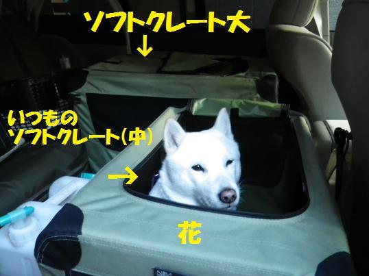 2012.11.25 ドライブ