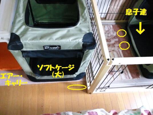 2012.11.29 寝室1