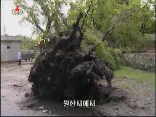 2012-07-20-17flv_000984640.jpg
