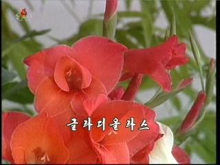 2012-11-02-14lv_000025083.jpg