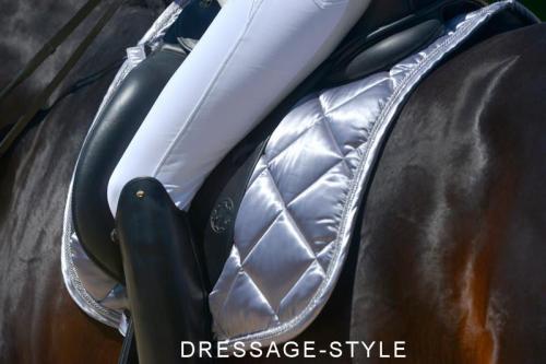 P_silver+cloth+on+the+ride+PLATINUM_convert_20120827065753.jpg