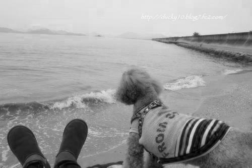 海とちゃお