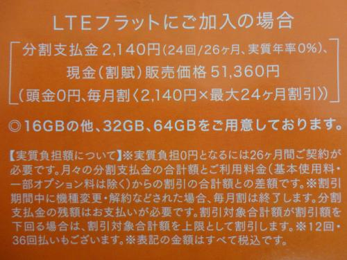 DSC02304_convert_20130628113457.jpg