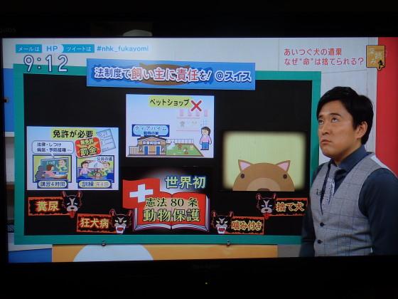 NHK 週間ニュース深読み