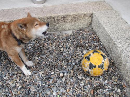 サッカーボールえもん3