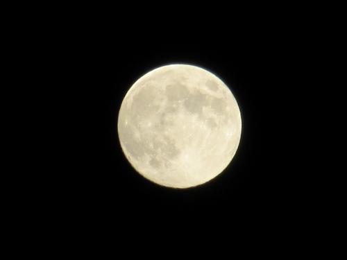 満月(八月一日)