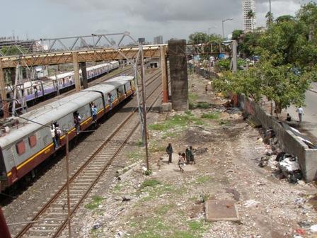 P1020078.jpg