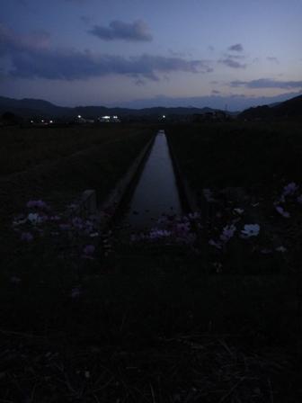 暗くなった