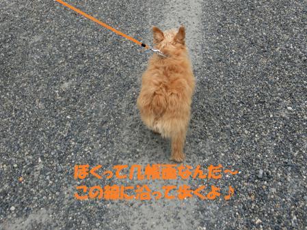 ジャンボくん歩く