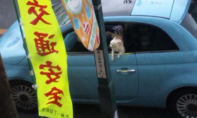 DRIVE_20120922