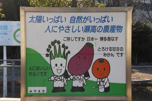 瀬高 (48)のコピー