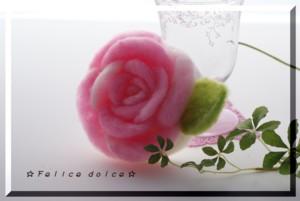 DSC04430.jpg