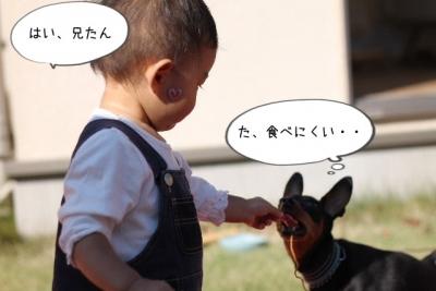 2014_10_19_9999_52.jpg