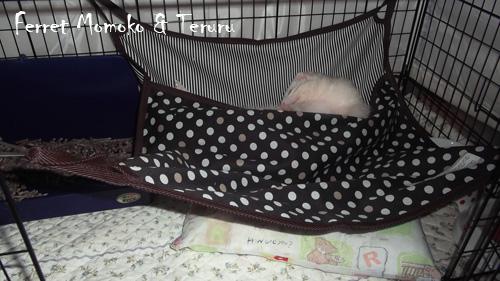 てるる様どっぷり寝へ~