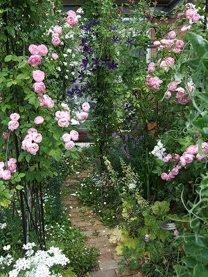 s-Jさんの庭①