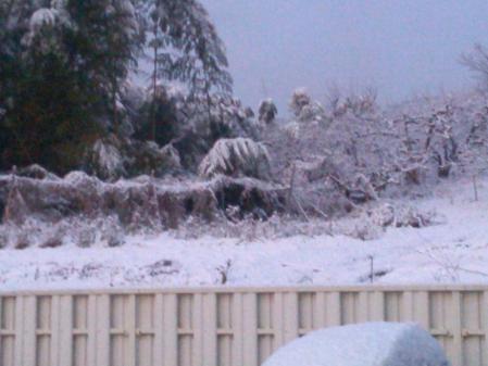 雪の里山2