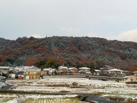 雪の里山1