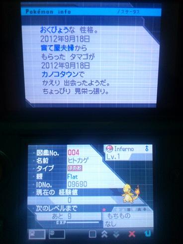 No.4 ★ヒトカゲ-2