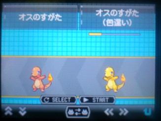 No.4 ★ヒトカゲ-3