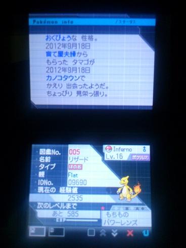 No.005 ★リザード-2