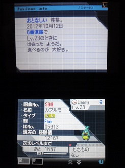 No.588 ★カブルモ-4