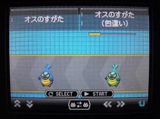No.588 ★カブルモ-5
