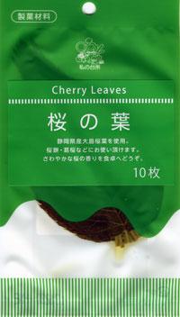 桜の葉02