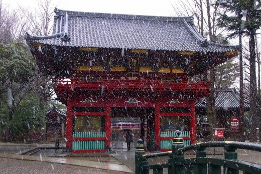 140204根津神社-2