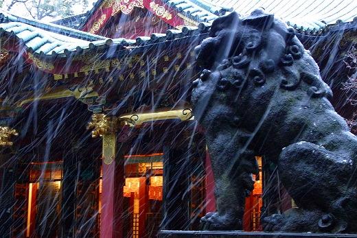 140204根津神社-4