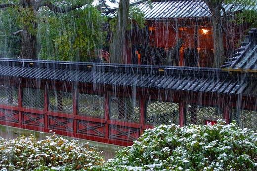 140204根津神社-5