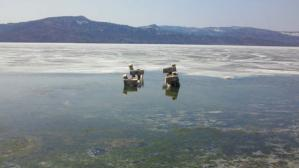 阿寒湖34