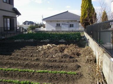 菜園№2_13_01_01