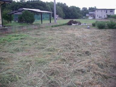 草刈完了11_08_14