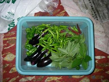 収穫11_08_24