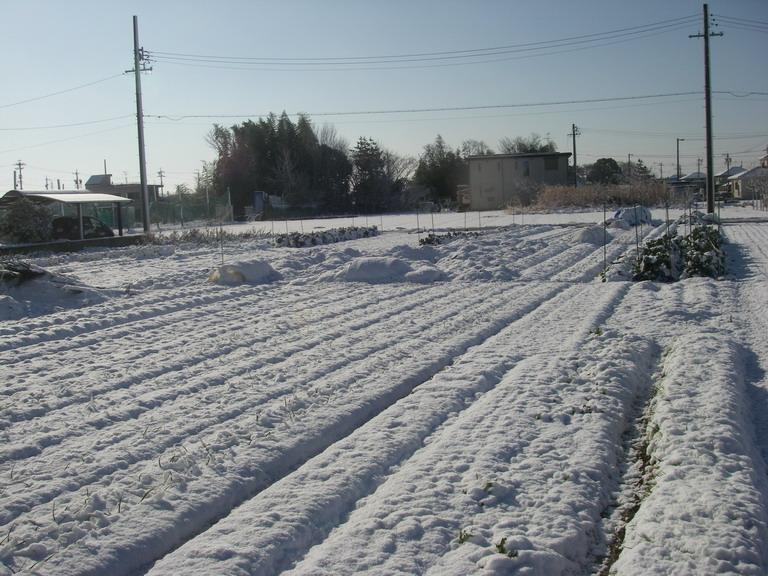 雪景色13_01_27