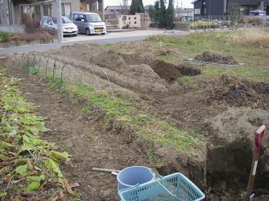 掘り方始め11_12_24