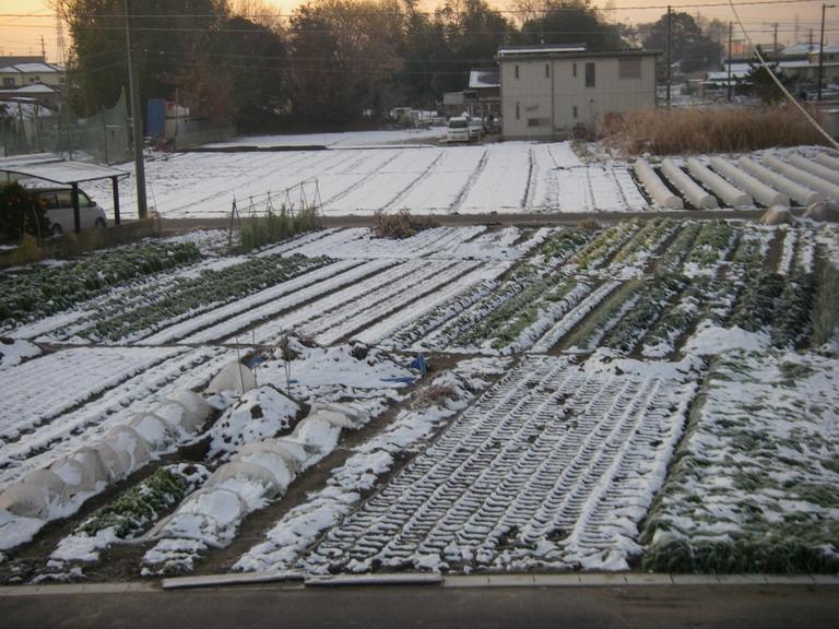 雪景色11_12_27