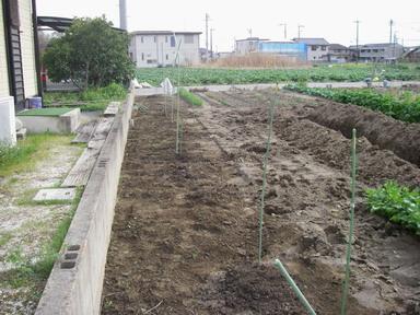 アスパラ草刈12_04_15