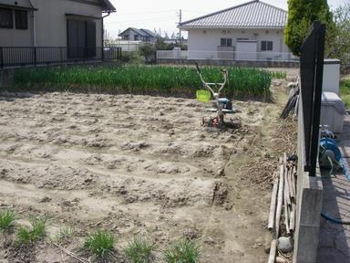 菜園№2ジャガイモ跡地12_04_19
