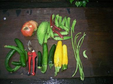 収穫12_08_14