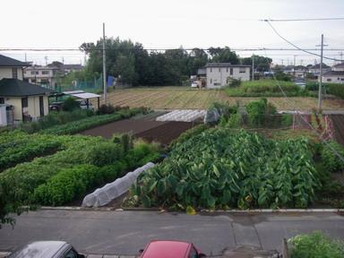 全景12_09_03