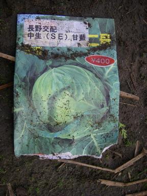 キャベツ種袋12_11_09
